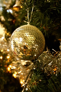 Christmas beauty