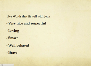 These are some words that go well to explain the qualties that Jem have. Very nice and respectful, Loving, Smart, Well Behaved and Brave.